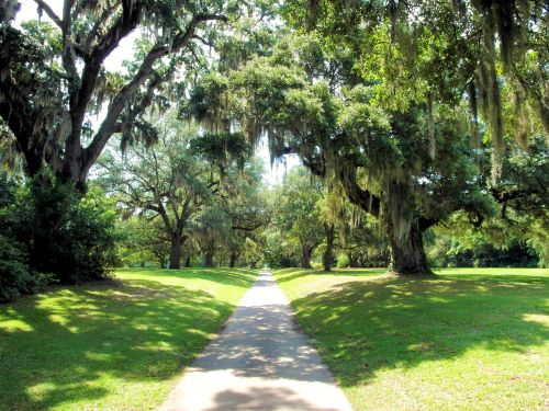 south brookgreen oaks
