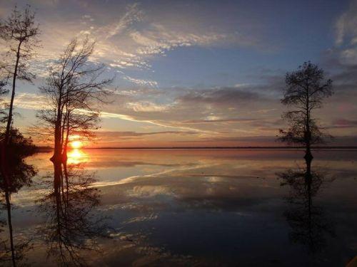 ches lake