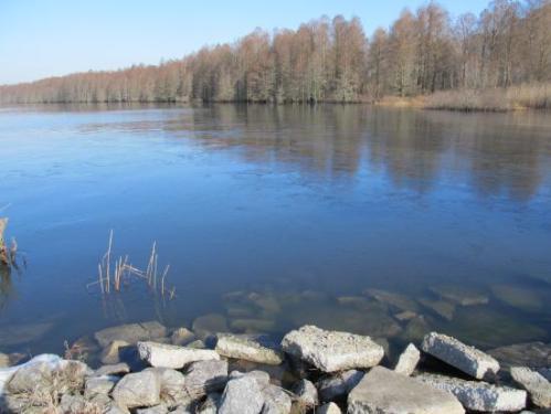 nc lake phelps