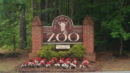 rich zoo