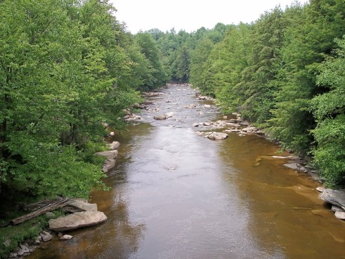 west black river
