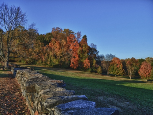 Fall at Brandywine Creek