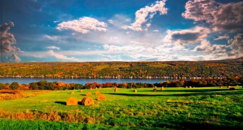NY finger lakes