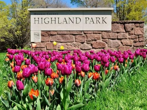 NY Highland 1