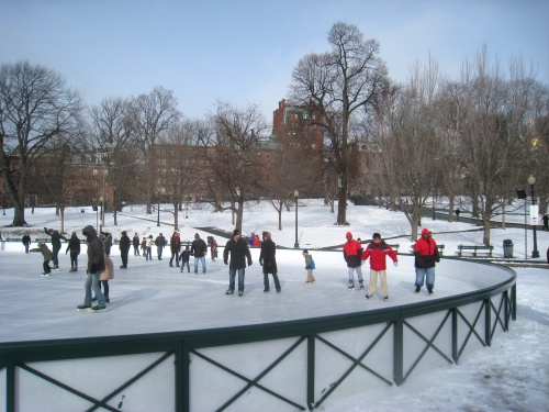 bos frog pond winter.JPG