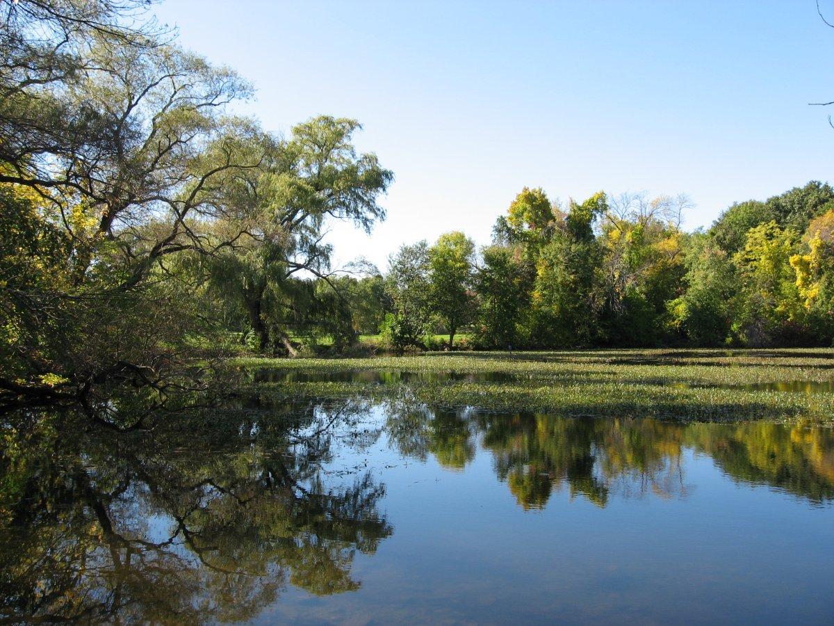 cam fresh pond