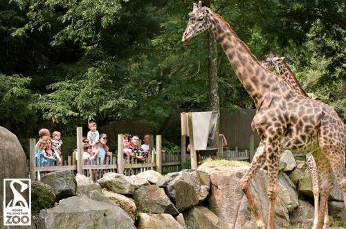 prov zoo