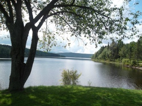 ham lake-francis-state-park