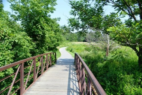 vermont stowe-recreation-path