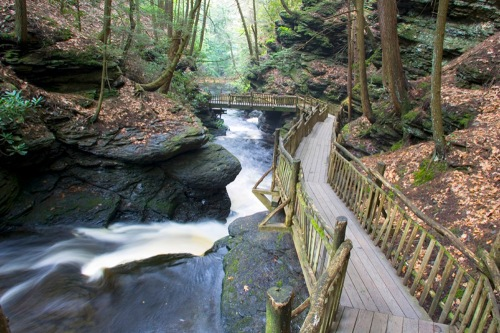 pen bushkil-falls_scenic-fall_60106085_1000x667