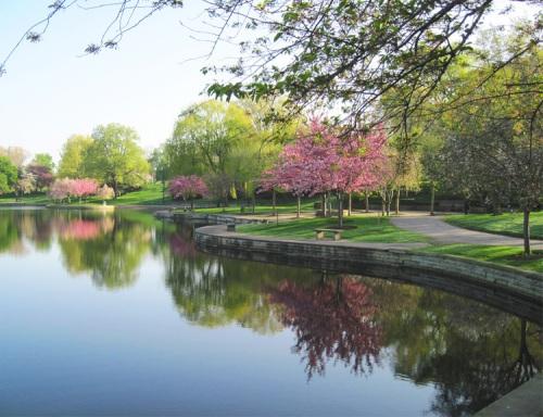 cleve arts garden