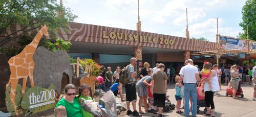 louis zoo