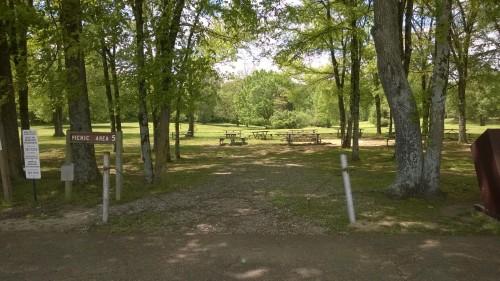 memphis bison shelby picnic