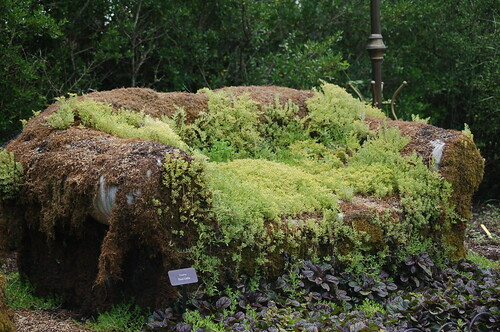 memphis botanic backyard couch