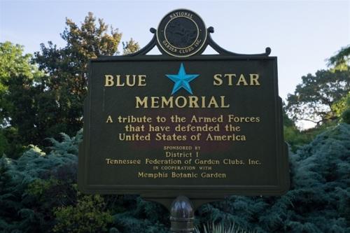 memphis botanic blue star