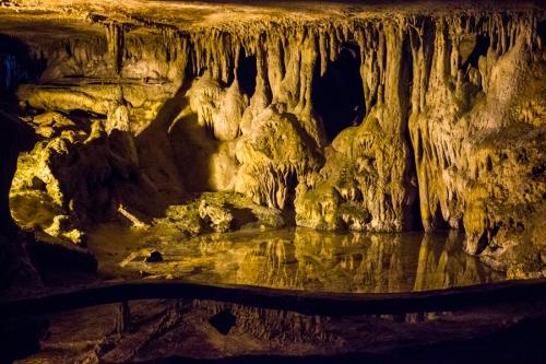 ten raccoon-caverns