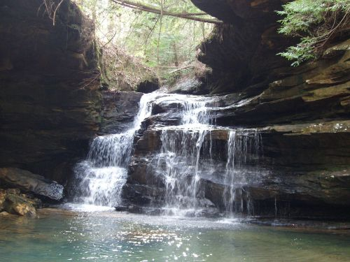 al turkey foot falls
