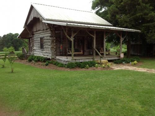 M mitchell cabin