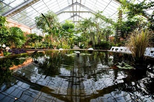 mich botanical Conservatory-pond-1