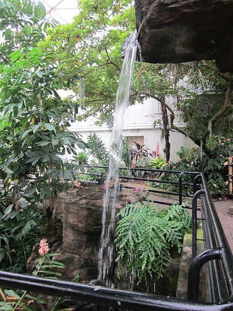 fort wayne botanic trop water
