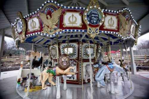 indy zoo carousel