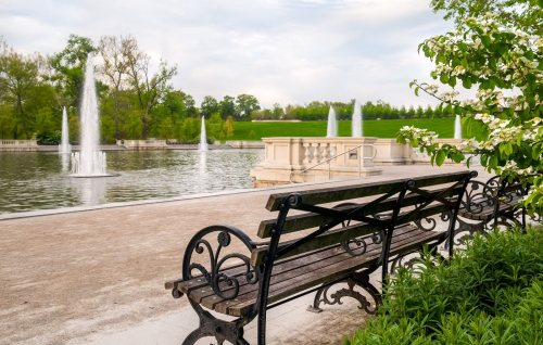 miss forest park bench