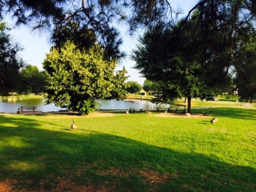 ark macarthur foster pond