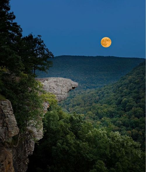 arkansas whitaker Hawksbill Crag in the moonlight