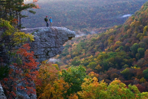 arkansas whitaker point
